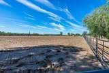 4125 Pinnacle Vista Drive - Photo 5