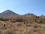 14310 Desert Tortoise Trail - Photo 10