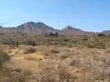 14310 Desert Tortoise Trail - Photo 11