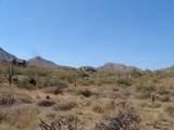 14310 Desert Tortoise Trail - Photo 12