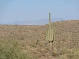 14310 Desert Tortoise Trail - Photo 13