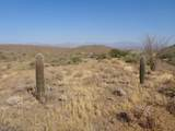 14310 Desert Tortoise Trail - Photo 14