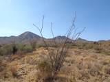 14310 Desert Tortoise Trail - Photo 15
