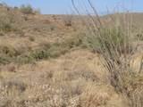 14310 Desert Tortoise Trail - Photo 16