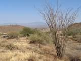 14310 Desert Tortoise Trail - Photo 17