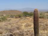 14310 Desert Tortoise Trail - Photo 18