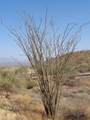 14310 Desert Tortoise Trail - Photo 19