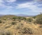14310 Desert Tortoise Trail - Photo 3