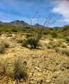 14310 Desert Tortoise Trail - Photo 4