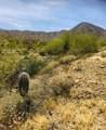 14310 Desert Tortoise Trail - Photo 5