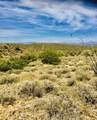 14310 Desert Tortoise Trail - Photo 6