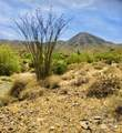 14310 Desert Tortoise Trail - Photo 7