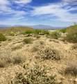 14310 Desert Tortoise Trail - Photo 8
