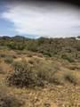 14310 Desert Tortoise Trail - Photo 9