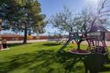 6441 Cactus Road - Photo 57