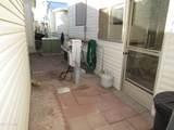 315 Saguaro Drive - Photo 44
