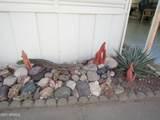 315 Saguaro Drive - Photo 53