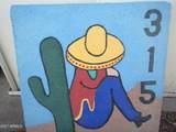 315 Saguaro Drive - Photo 55