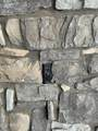 6115 175TH Avenue - Photo 11