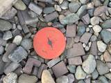6115 175TH Avenue - Photo 8