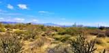 14226 Desert Vista Trail - Photo 12