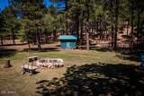 2545 Canyon Drive - Photo 18
