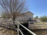 2984 Horse Mesa Trail - Photo 35