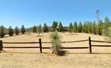 1364 Yucca Drive - Photo 2
