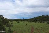 9801 Porter Mountain Road - Photo 3