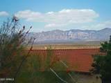 431 Via Loma Linda - Photo 11