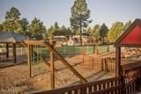 2615 Elk Run Court - Photo 49