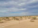 14088 Palo Verde Trail - Photo 41