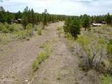 2963 Lone Tree Lane - Photo 45