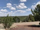 8745 Silver Creek Drive - Photo 4
