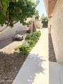 10422 Chestnut Drive - Photo 30
