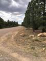 6473 Mogollon Trail - Photo 11