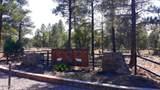 6473 Mogollon Trail - Photo 2