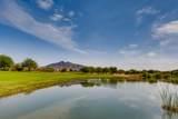 33575 Dove Lakes Drive - Photo 28