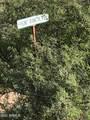 TBD Hunt Ranch Trail - Photo 3