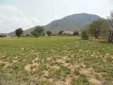6499 Saddlehorn Cir - Photo 26