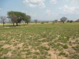 6499 Saddlehorn Cir - Photo 28