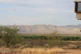 10637 River Ridge Road - Photo 43