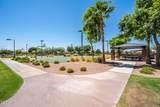 41070 Eliana Drive - Photo 71