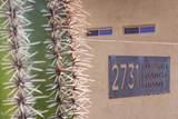 2731 Desert Ranch Road - Photo 8