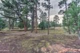 2724 Black Bear Trail - Photo 37