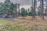2724 Black Bear Trail - Photo 42