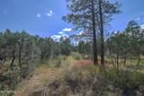 2217 Mountain Lion Lane - Photo 3