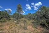 2217 Mountain Lion Lane - Photo 7