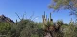 10687 Cinder Cone Trail - Photo 27