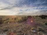 4475 Starlit Trail - Photo 21